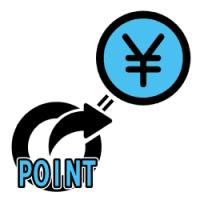 point-money-250-250