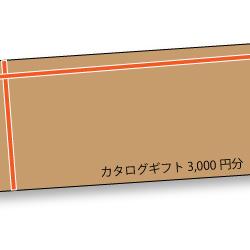 amatera-thank-you-campaign1-catarog-gift-3000